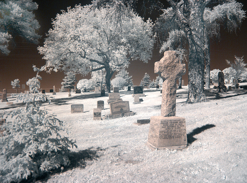 Local Cemetary #3<br /> <br /> Altered my workflow in Photoshop to get different colours.
