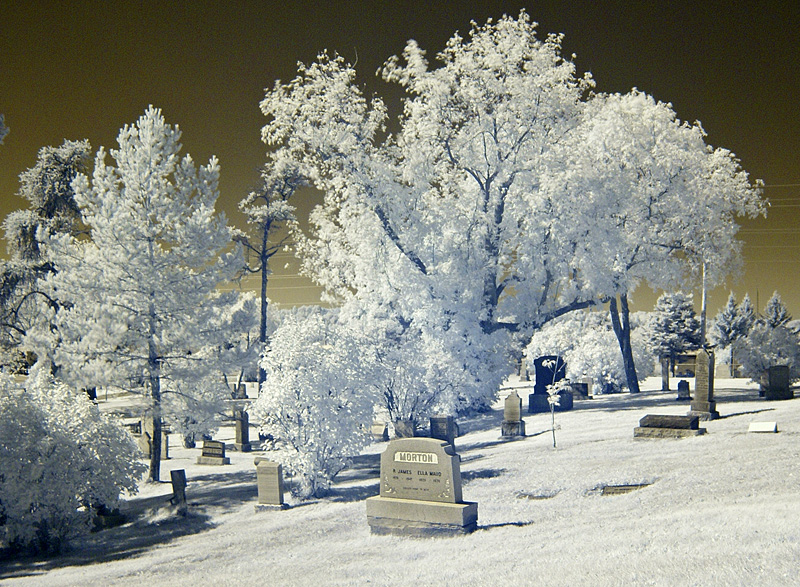 Local Cemetary, 5th in what is becoming a series.