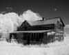 IR photo of an old homestead found west of Wabigoon Ontario.<br /> <br /> Modified Canon G5 to shoot IR.