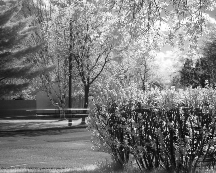 This photo was taken by placing my camera (Canon 7D, Sigma 50mm 2,.8 and a Hoya R72 IR filter) on my front steps. The streak in the intersection was caused by a car driving by. Camera settings: 1000 iso, 3.2 seconds at f2.8.