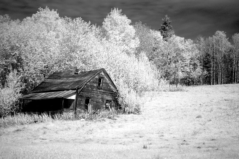 IR photo taken with a Canon 20D DSLR in 2005. This abandoned house is one of my favorite subjects.<br /> <br /> An earlier IR photo, Canon 20D.