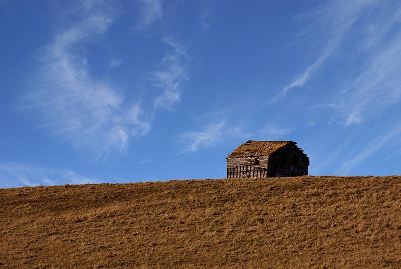 Lone cabin in a field near Dryden.