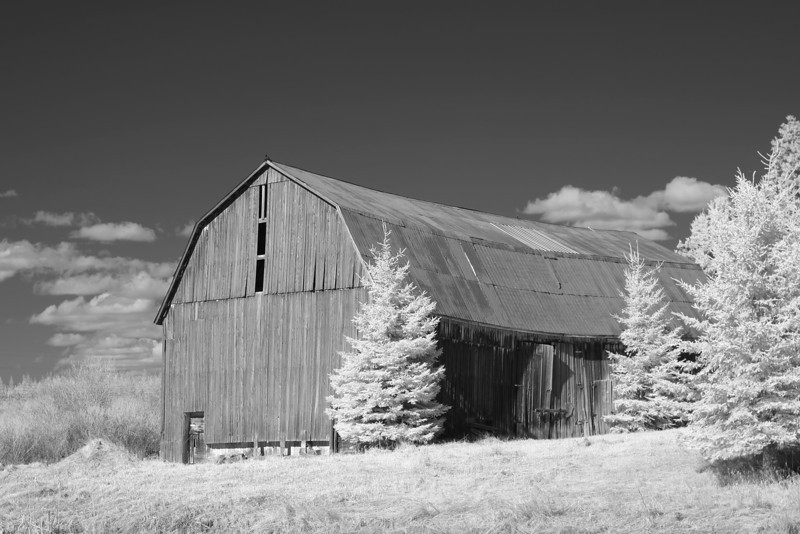 Gamble Barn in IR<br /> <br /> Photographed with a Canon 10D modified to shoot IR.