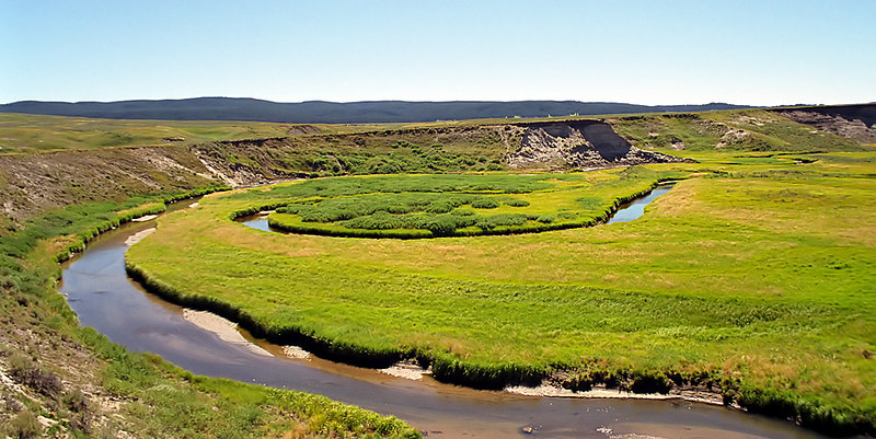 Meandering creek in Yellowstone National Park, Wyoming, USA