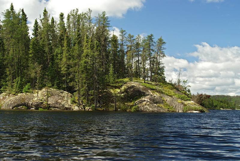 Part of a larger island I paddled by while on Dogtooth Lake.