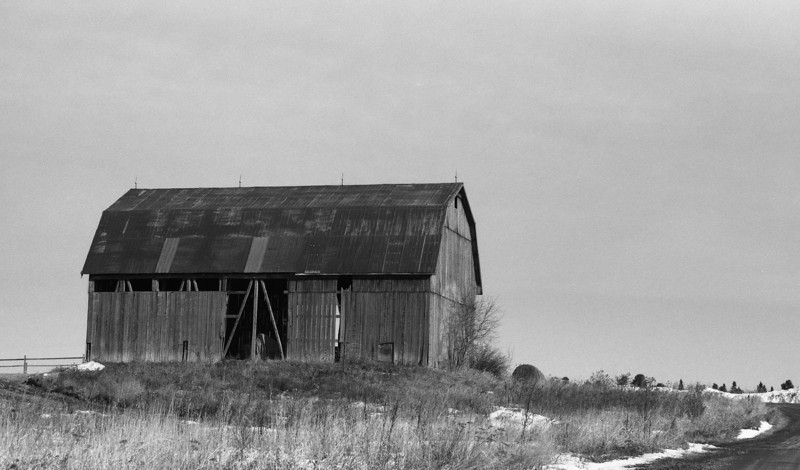 Local barn that I use as a subject when I'm testing films, cameras, developers.<br /> <br /> Leica R4, ORWO UN54 rated at 100 developed in HC-110 dilution 'J' (1:150) for 20 mins at 19C.