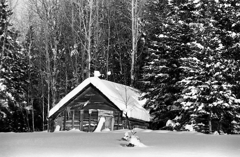 The second time I used this camera. A photo of what I assume to be an old shed west of Dryden along highway 594. Photo taken and developed January 2009. I developed this second roll of film first.<br /> <br /> Voighander Vito B (circa 1954) loaded with Ilford HP5+ developed in Kodak D76 for 8.25 minutes at 19C.