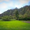 20180691 - Kualoa Ranch - Oahu