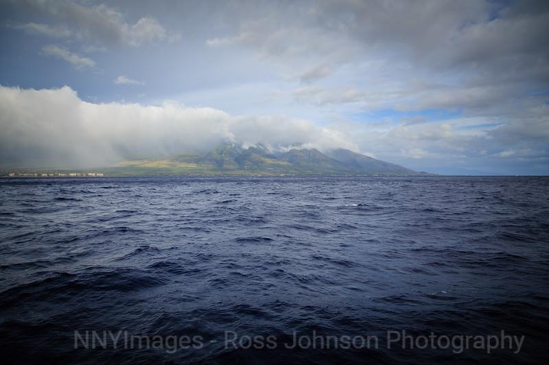 20181077 - Road to Hana Whale Watch - Maui