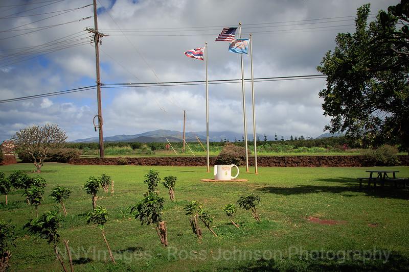 20181484 - Koloa Coffee Estate - Kauai