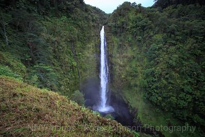 20181655 - Akaka Falls State Park - Kahuna Falls - Hawaii
