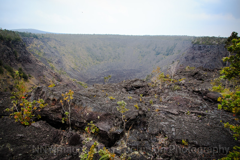 20181584 - Volcano National Park - Chain of Craters Road - Hawaii