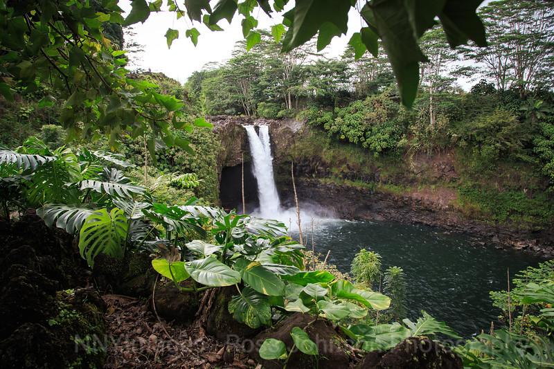 20181592 - Rainbow Falls - Wailuku State Park - Hawaii