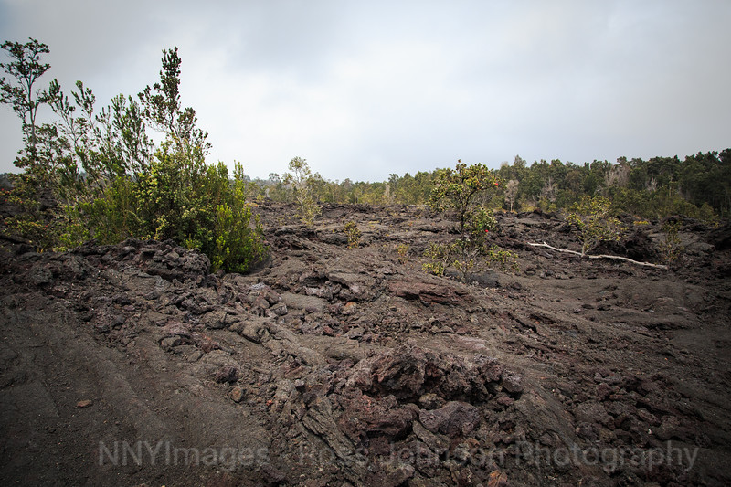 20181574 - Volcano National Park - Chain of Craters Road - Hawaii