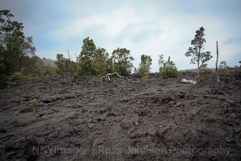 20181570 - Volcano National Park - Chain of Craters Road - Hawaii