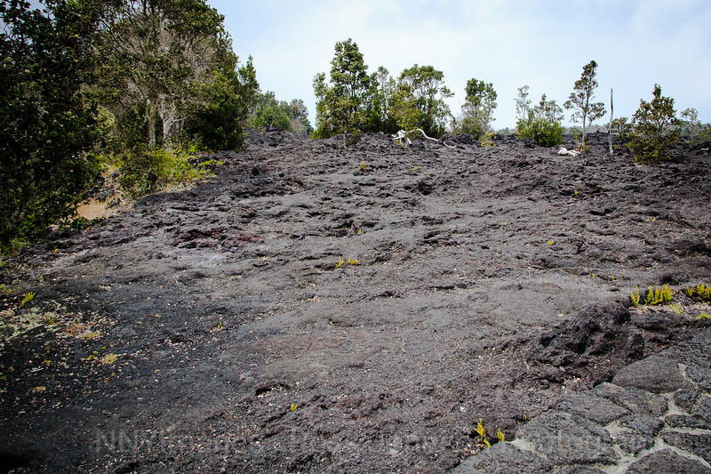 20181569 - Volcano National Park - Chain of Craters Road - Hawaii