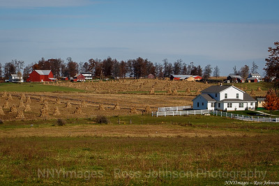 20131109-5D312521 Barns in Amish Country