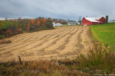20131102-5D312235  Amish Country
