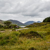 140826-5D316697 - Ireland - Killarney - Ring of Kerry