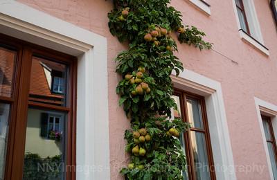 5D321304 Rothenburg, Germany
