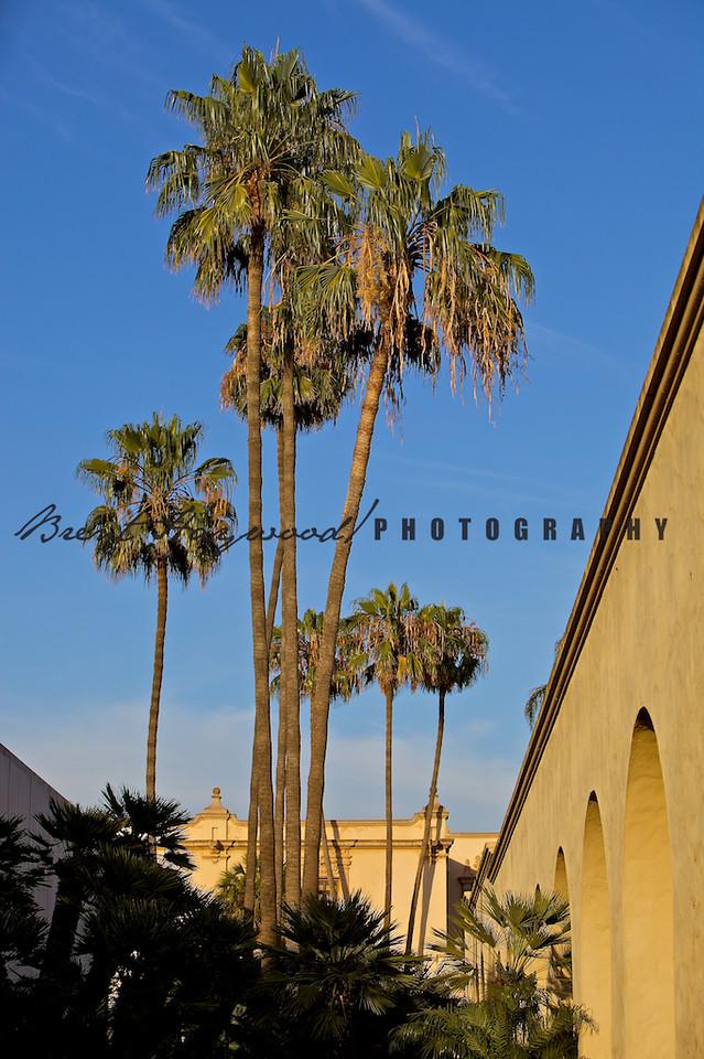 Balboa Park IMG_0495