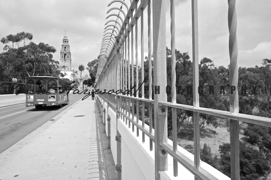 Balboa Park IMG_1409