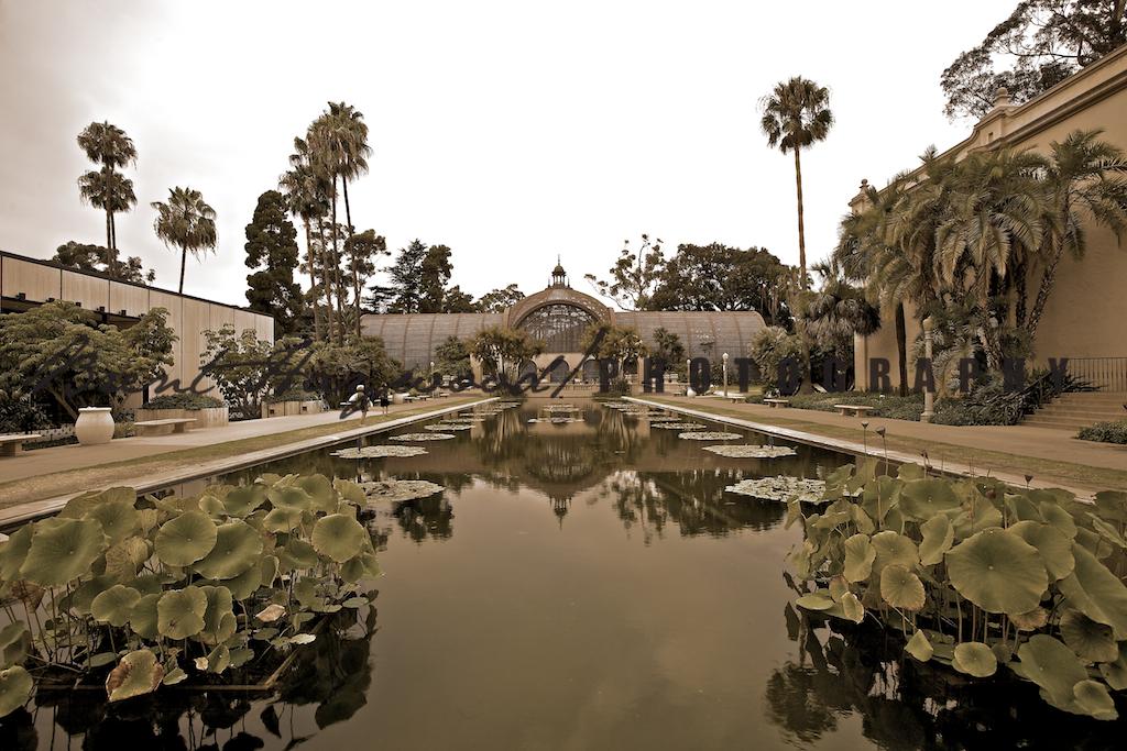 Balboa Park IMG_3655