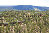 Big Bear Lake Aerial Photo IMG_8896