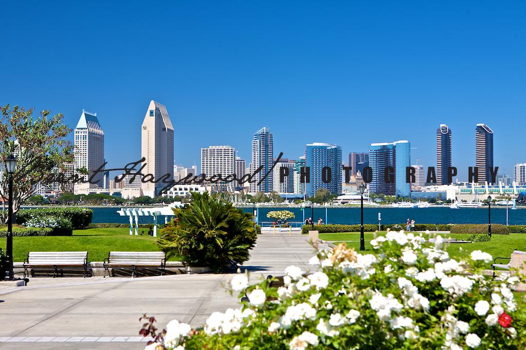 Downtown Coronado, San Diego Bay, Coronado Ferry IMG_7909