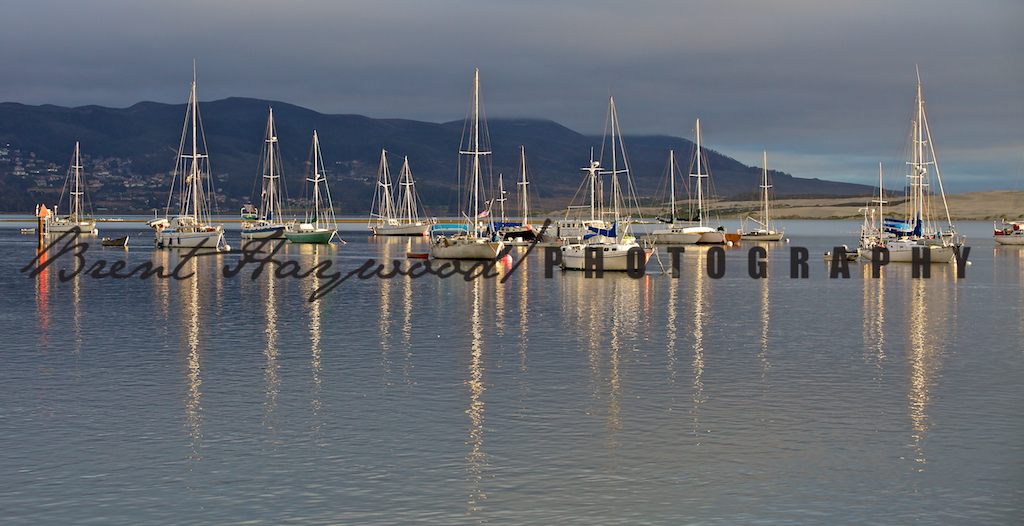 Morro Bay IMG_7999