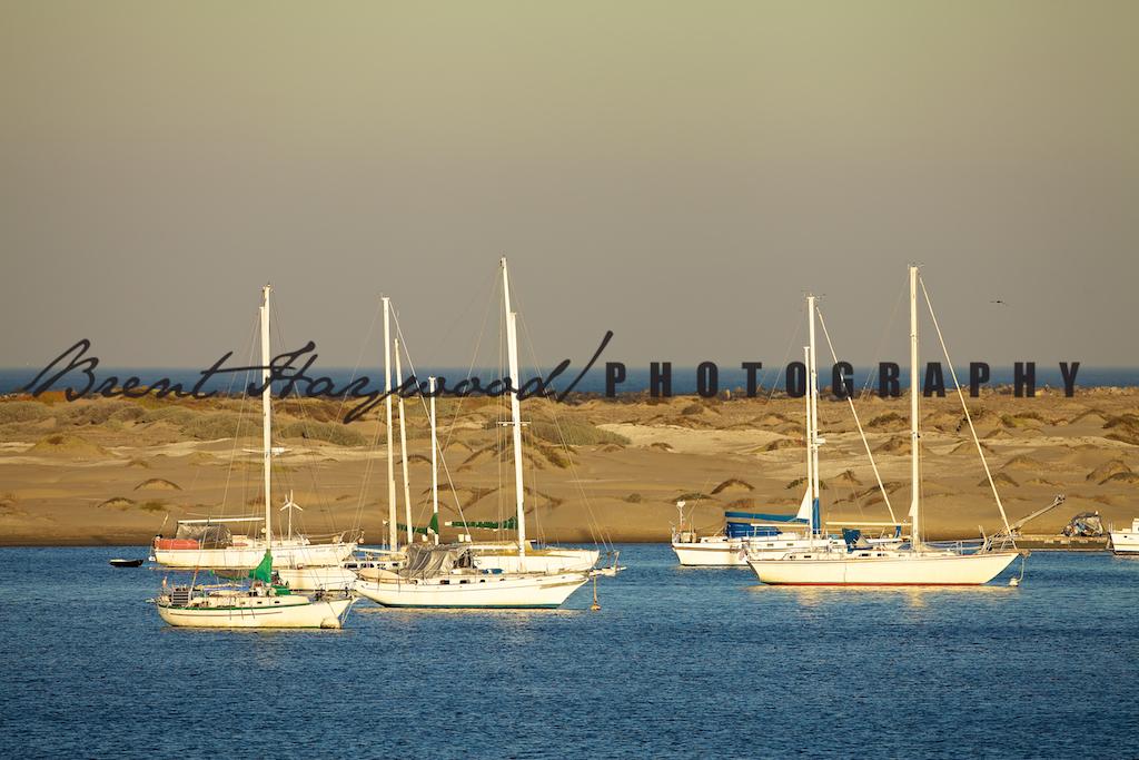 Morro Bay IMG_7419