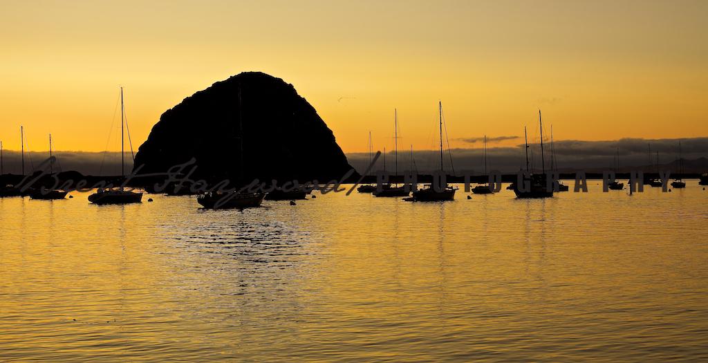 Morro Bay IMG_8067