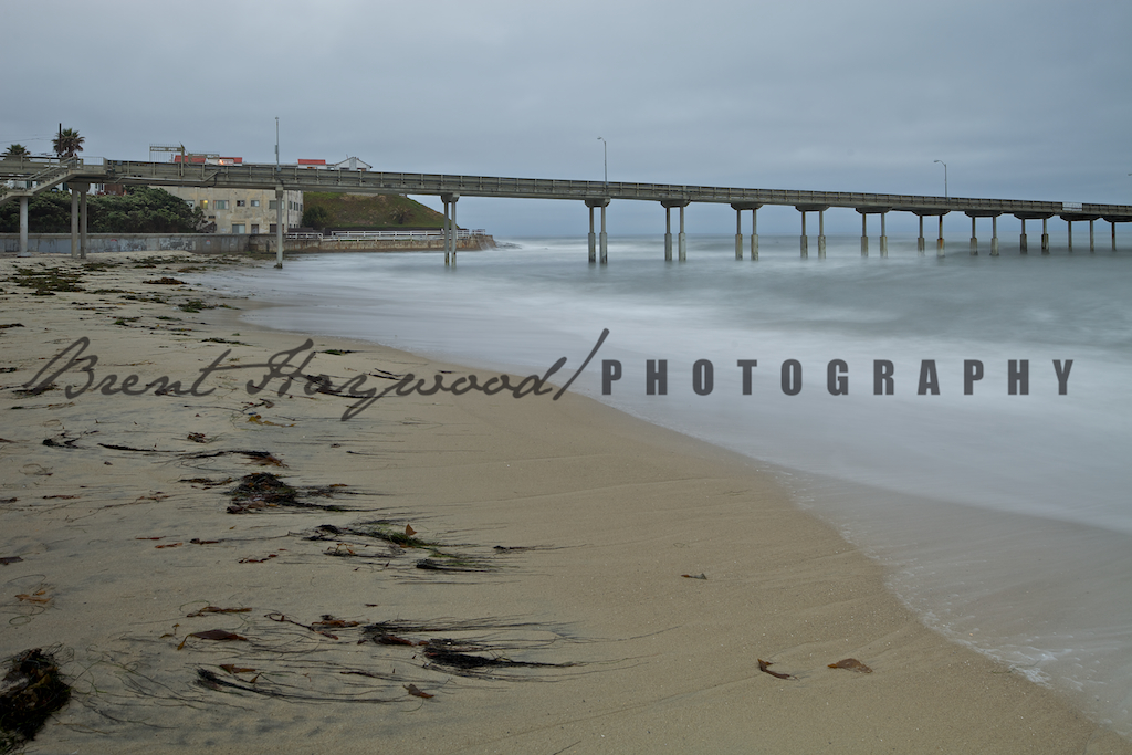 Ocean Beach IMG_0981