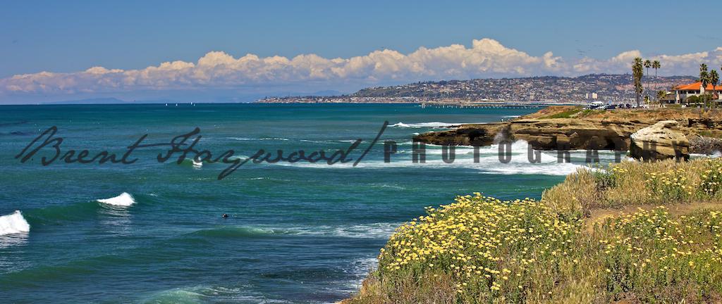 Ocean Beach IMG_3525
