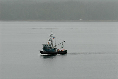 Ketchikan harbor.