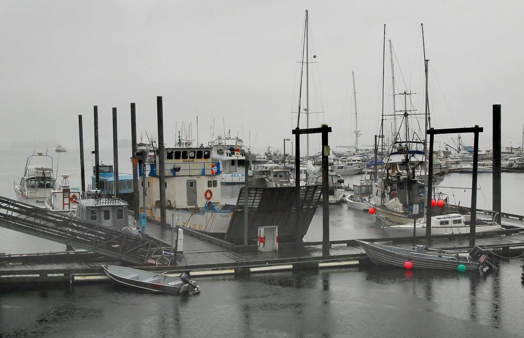 Juneau harbor