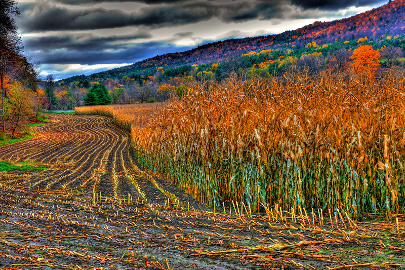 Near Woodstock, Vermont.