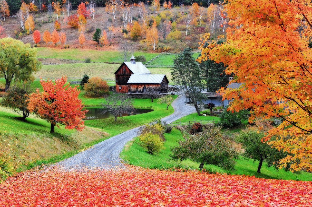 An often photographed farm with brilliant fall foliage,  along Cloudland Road, Vermont.