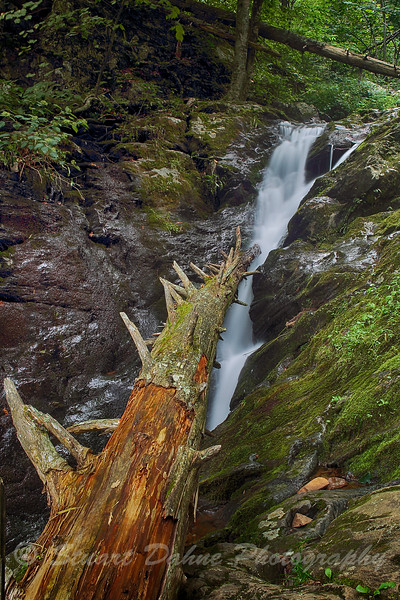 Lower section of Dark Hollow Falls, Shendoah Pkwy., Va.