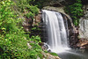 Looking Glass Falls, Pisgah National Forest, N.C.