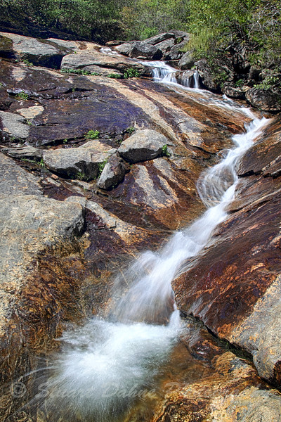 Graveyard Fields Hike, Asheville, N.C.
