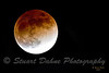 LUNAR ECLIPSE 2-20-2008