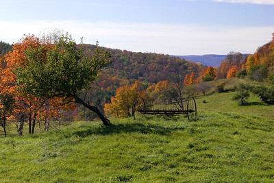 Autumn in Pomfret, Vermont