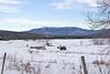 Mount Mansfield in Winter
