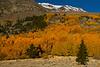 Eastern Sierra Nevada, California.  October 22,  2009