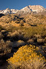 Sunrise, Butterfield Boulders, Eastern Sierra Nevada, California.  October 19, 2009