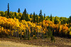 Guanella Pass Scenic Byway, Colorado.  Fall 2013