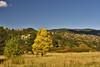Ute Park, Colorado Springs, Colorado.  October 2009