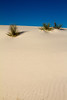 White Sands National Monument, New Mexico. December 2013