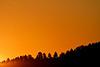 Sunset, Custer State Park, South Dakota.  September 2011